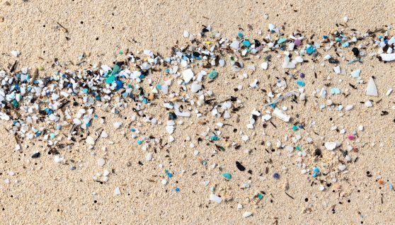 Nuclear techniques to study the impact of microplastics in the ocean