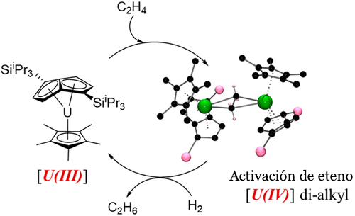 Esquema del proceso de conversión del uranio empobrecido catalizado (Imagen: N.Tsoureas et al.)