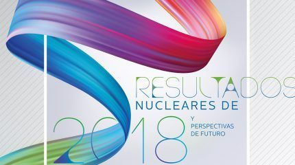 Nuclear energy results in 2018 and future perspectives