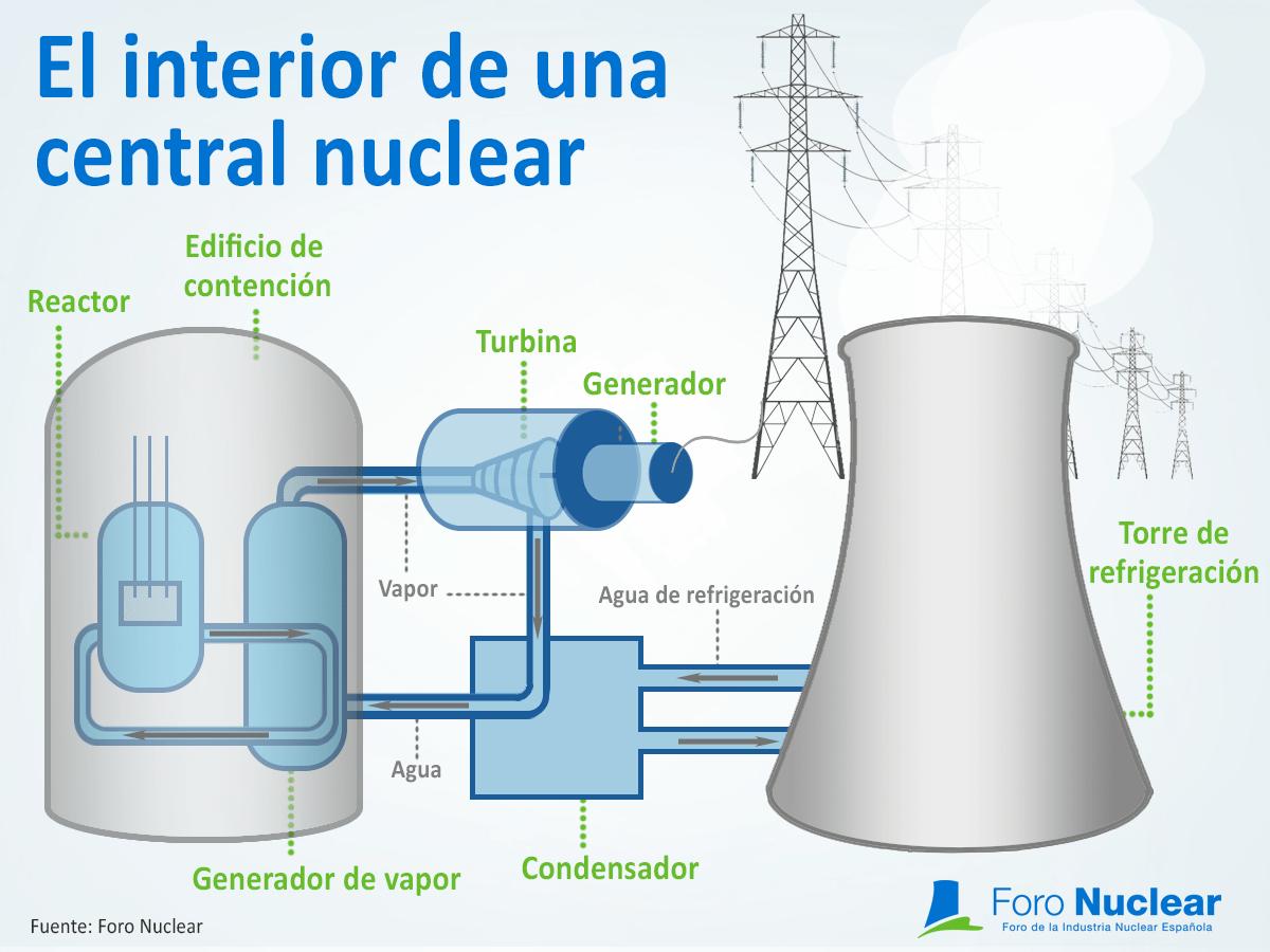 Qué es un reactor nuclear y qué elementos lo constituyen? - Foro Nuclear