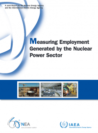 Measuring Employment Generated by the Nuclear Power Sector