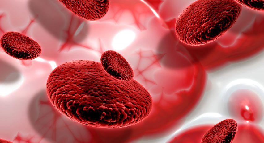 El CSN autoriza la primera instalación de rayos X para la esterilización de sangre